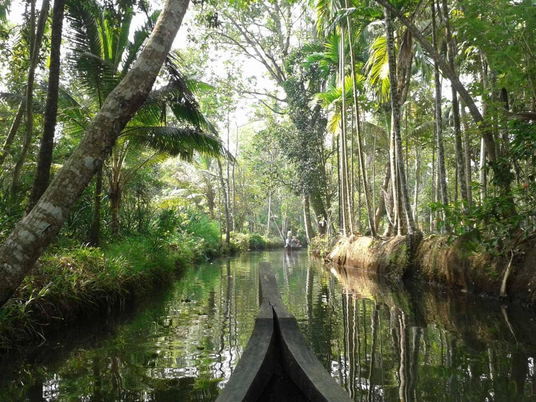 Kerala backwaters Zdroj: Archív Martina Kolárovcová