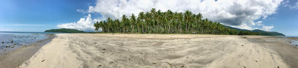 Panoramatická fotka - piesočnatá pláž s palmami, rozhovor s Martinom Masjidom