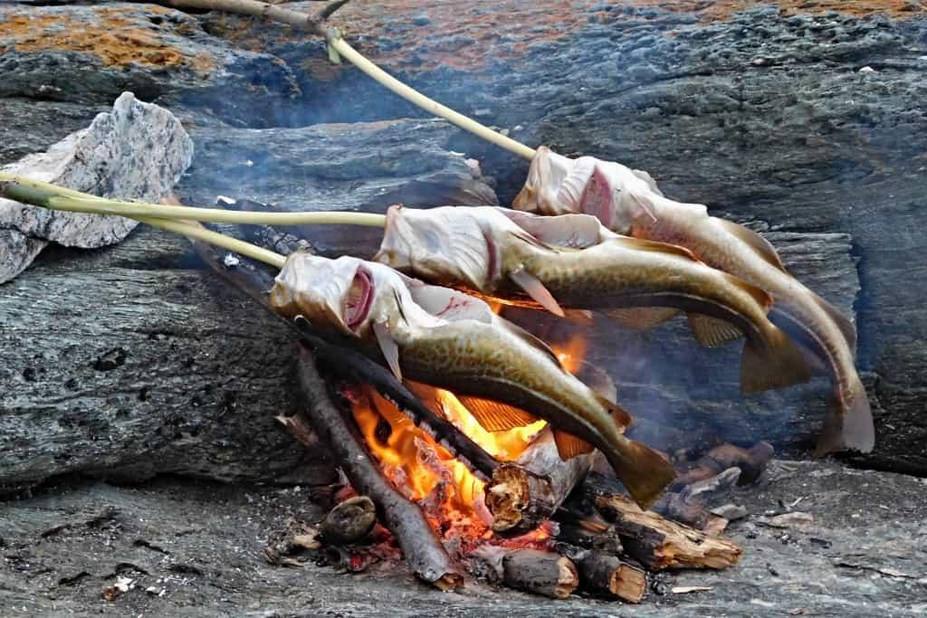 Opekanie rýb na ohni počas expedíce za polárny kruh
