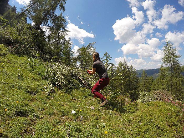 Čistenie lesa počas dobrovoľníckeho projektu v Alúách v spolupráci s asociáciou Österreichischen Alpenverein