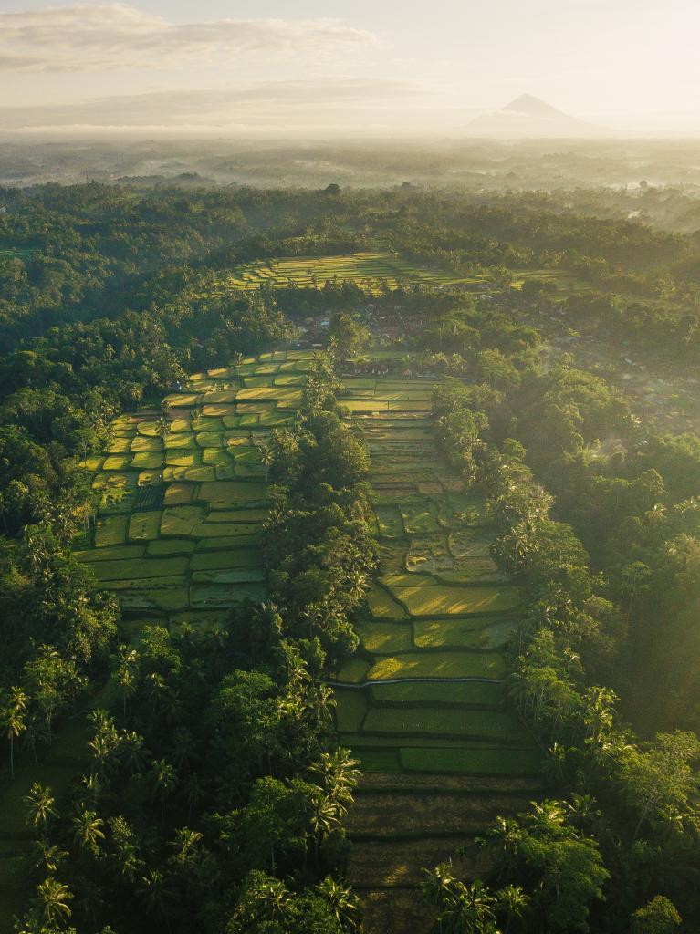 Ilustračná foto Indonézia