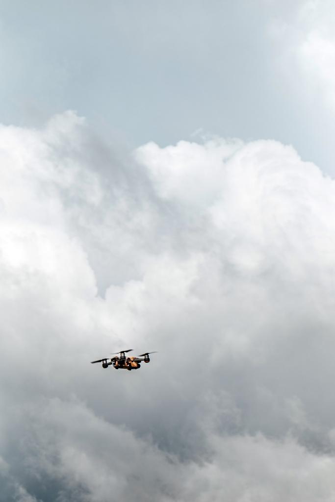 Dron - autor fotografie Maria Teneva