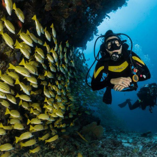 Potápanie, Maledivy