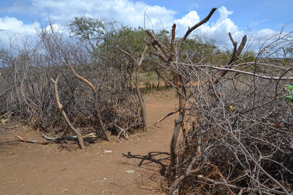 Ochrana osady pred divokou zverou, Afrika