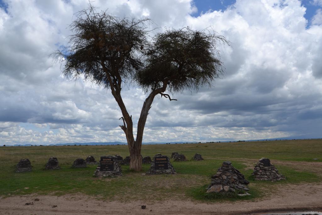 Stanislav Kaľavský - cintorín nosorožcov